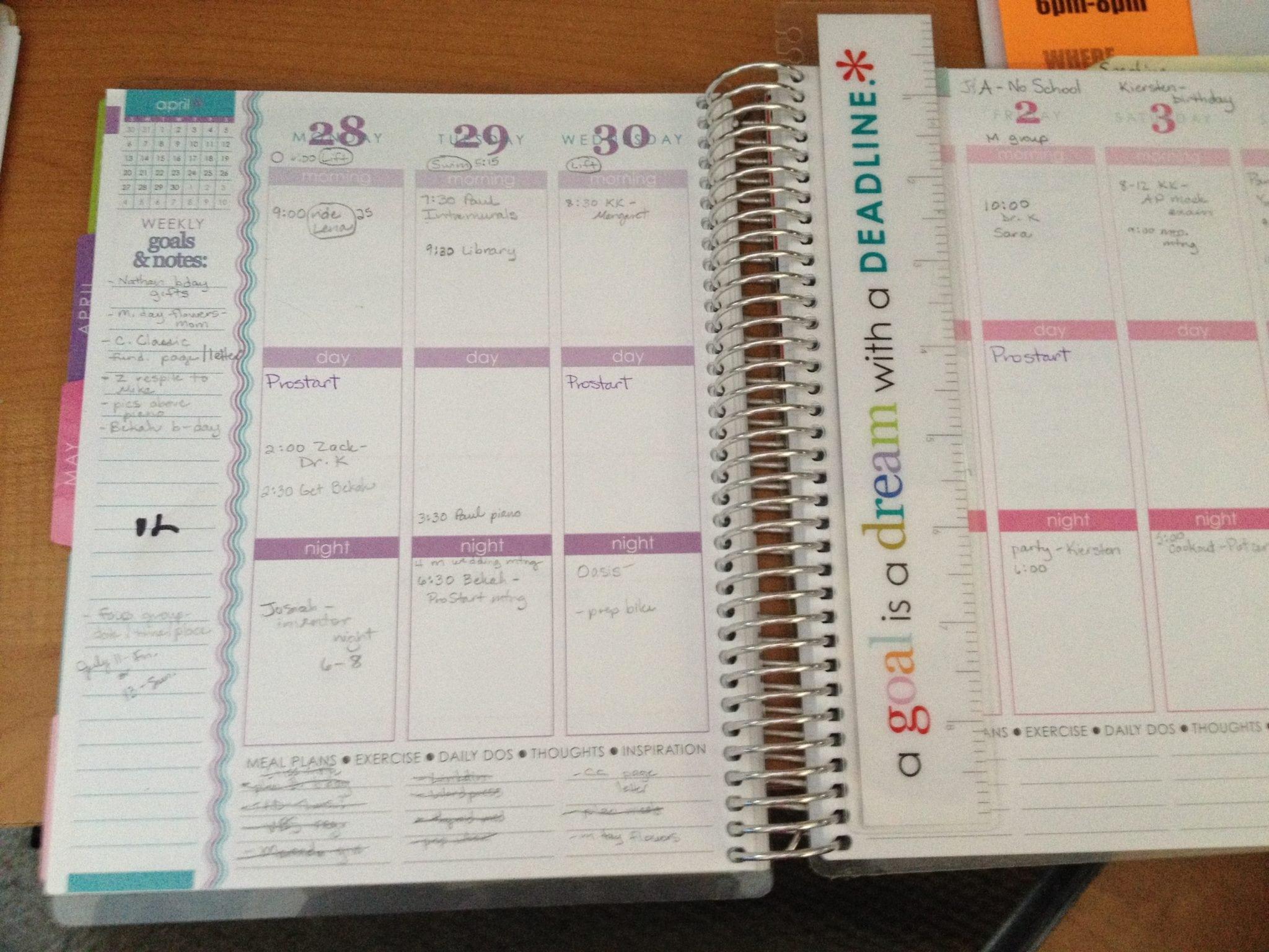 Erin Condren calendar
