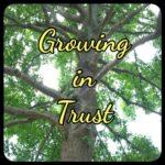 trust, oak tree