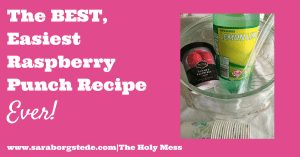 The BEST, Easiest Raspberry Punch Recipe Ever!