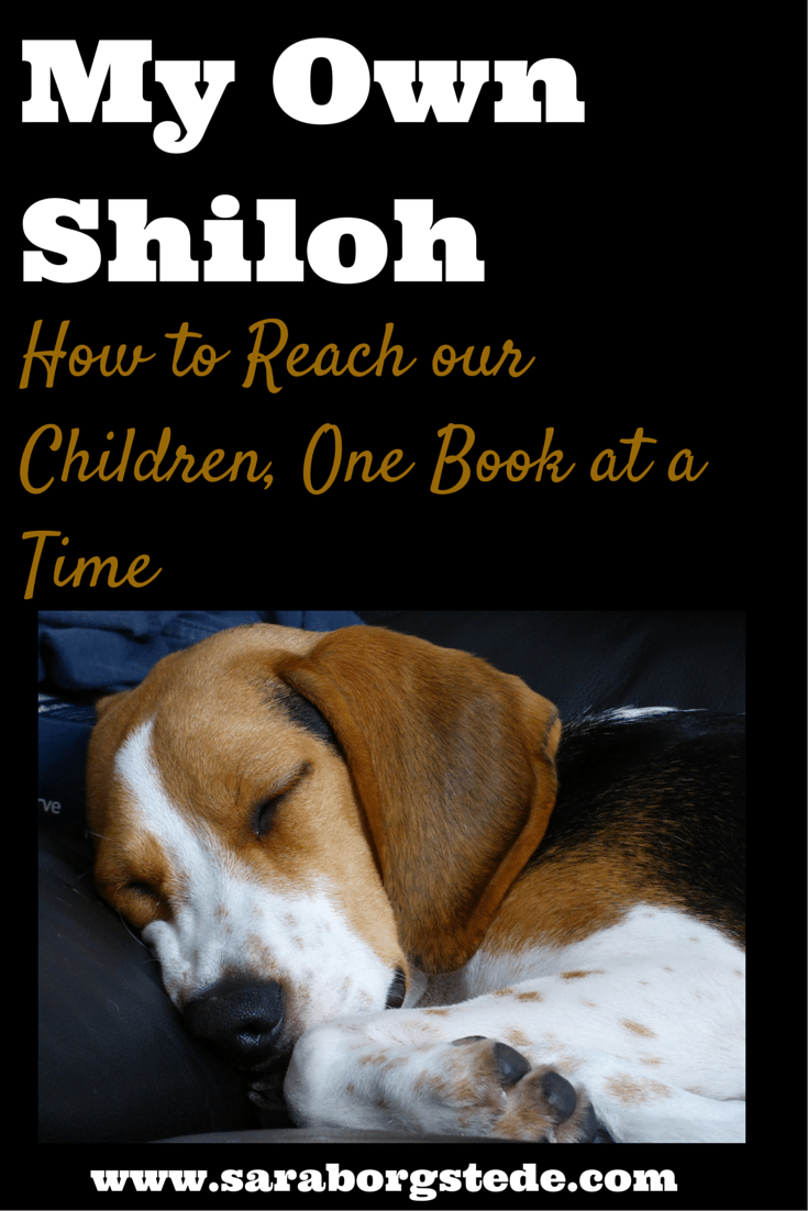 My Own Shiloh