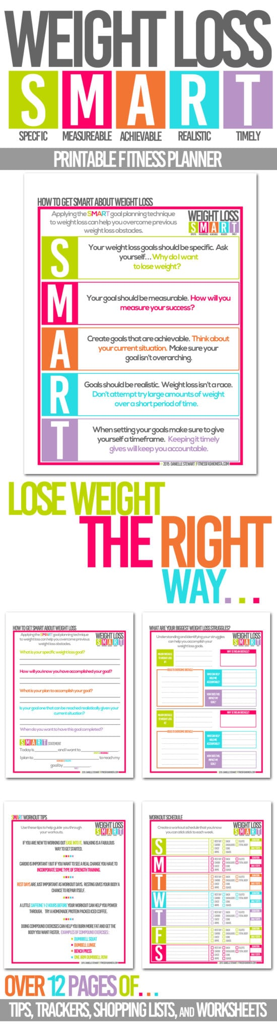 The top 5 absolute best fitness and weight loss planners for Weight loss goals template