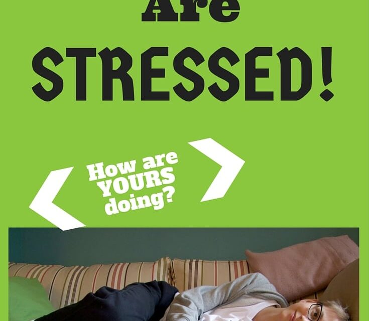 Are Your Kids Stressed?