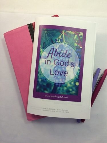 Abide in God's Love book