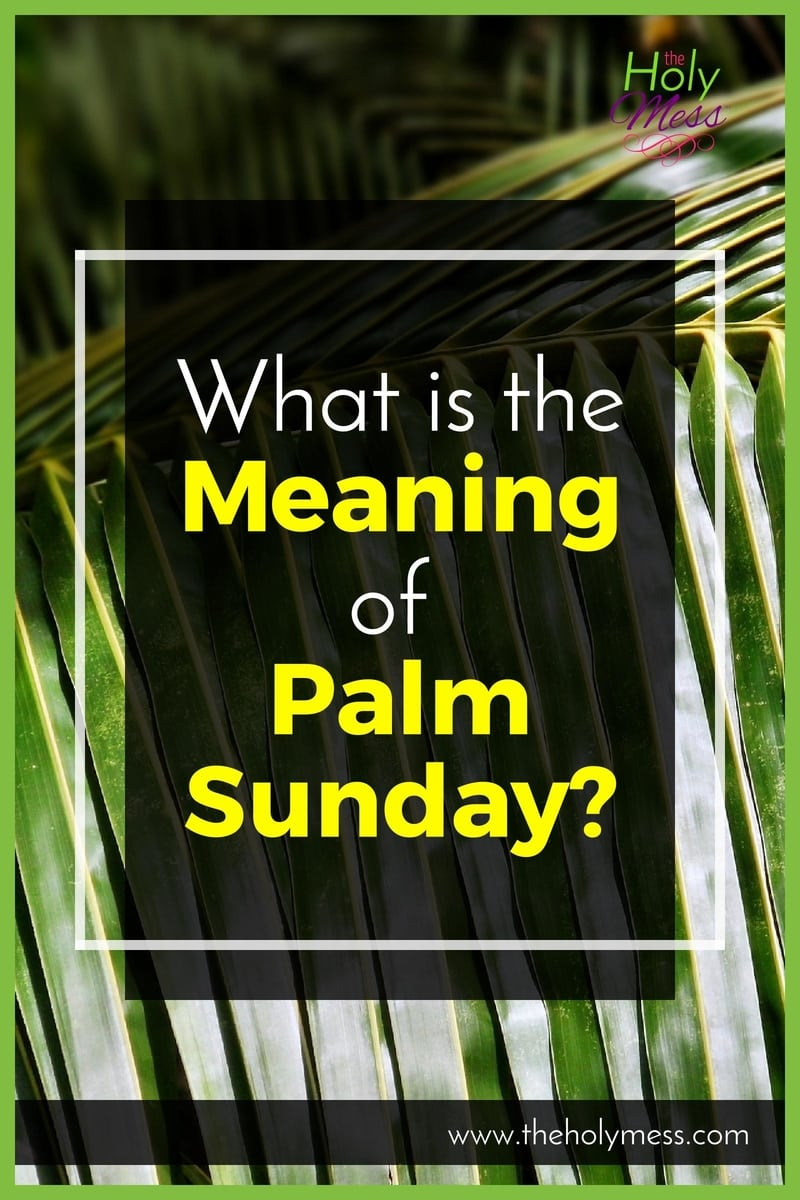 What is the Meaning of Palm Sunday?|The Holy Mess