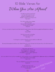 10 Bible Verses for When You Are Afraid|The Holy Mess