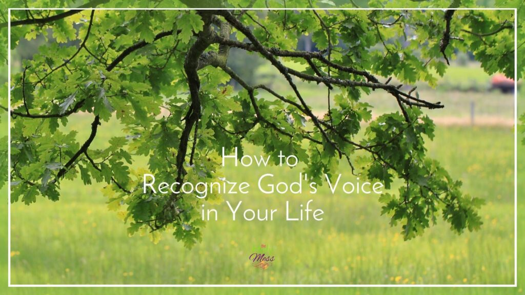 How to Recognize God's Voice in Your Life|The Holy Mess
