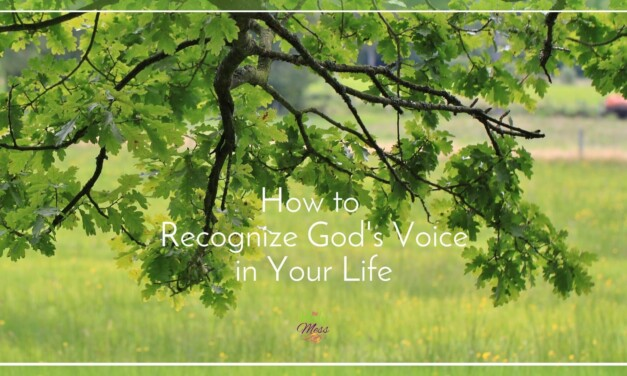 How to Recognize God's Voice in Your Life