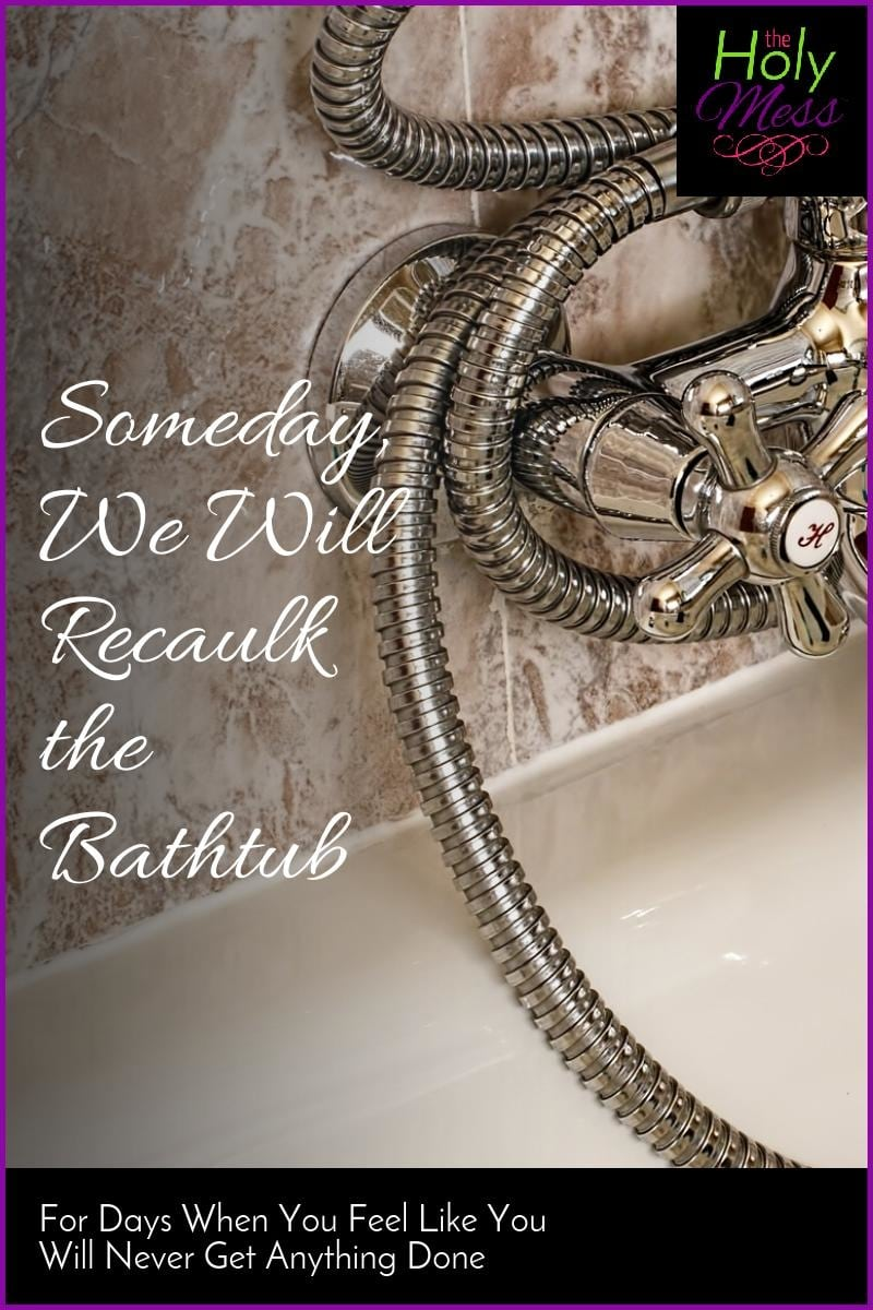 Someday We Will Recaulk the Bathtub|The Holy Mess