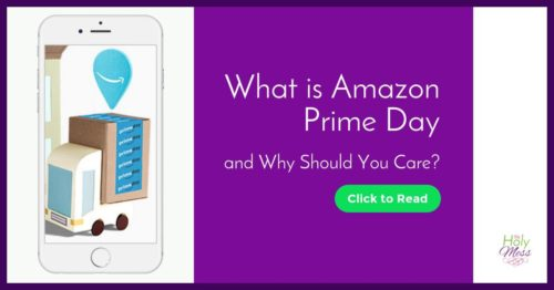What is Amazon Prime Day and Why Should You Care?