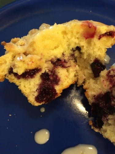 Fresh blueberry muffins|The Holy Mess