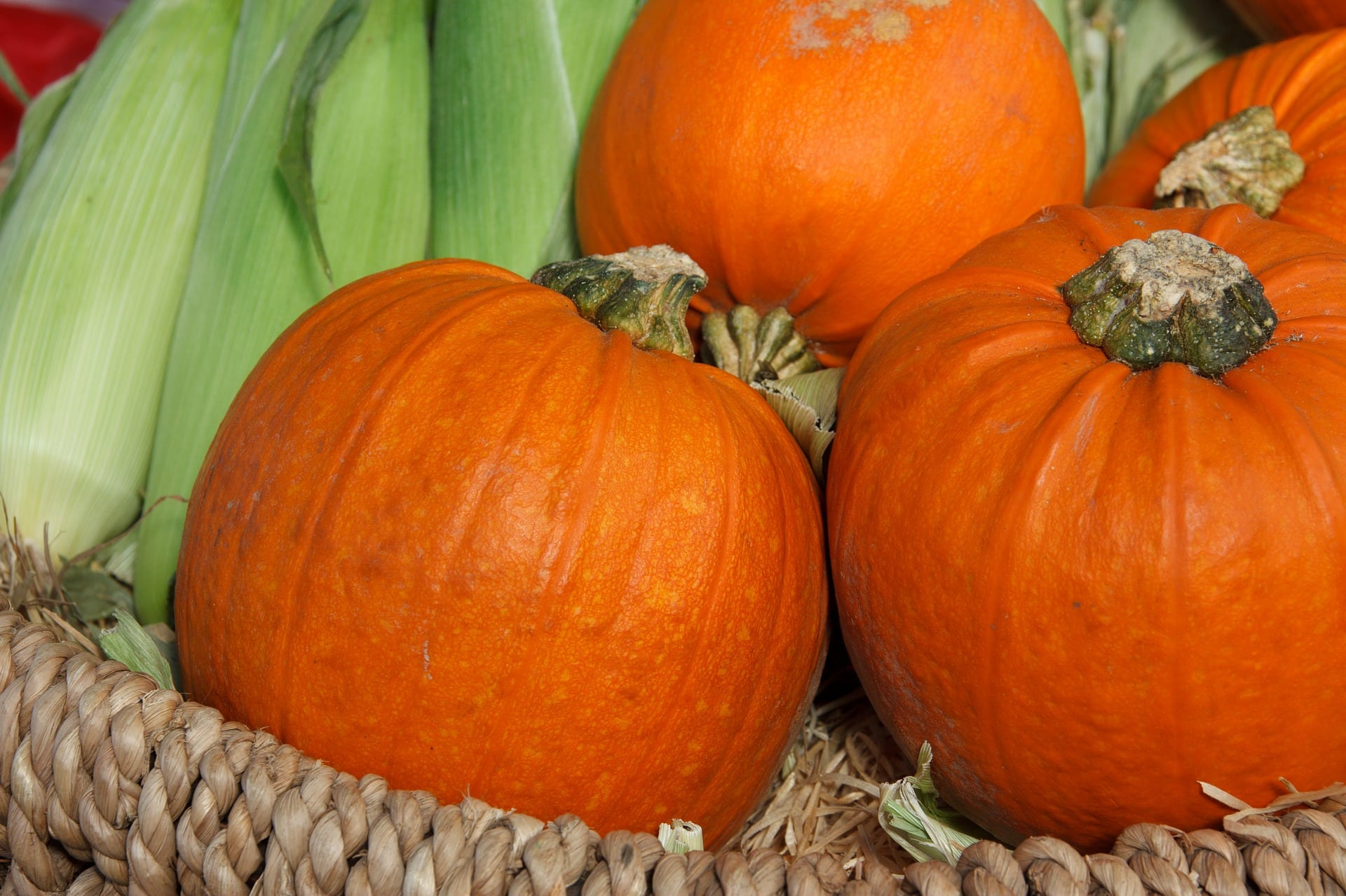 3 Healthy Ways to Use Canned Pumpkin|The Holy Mess