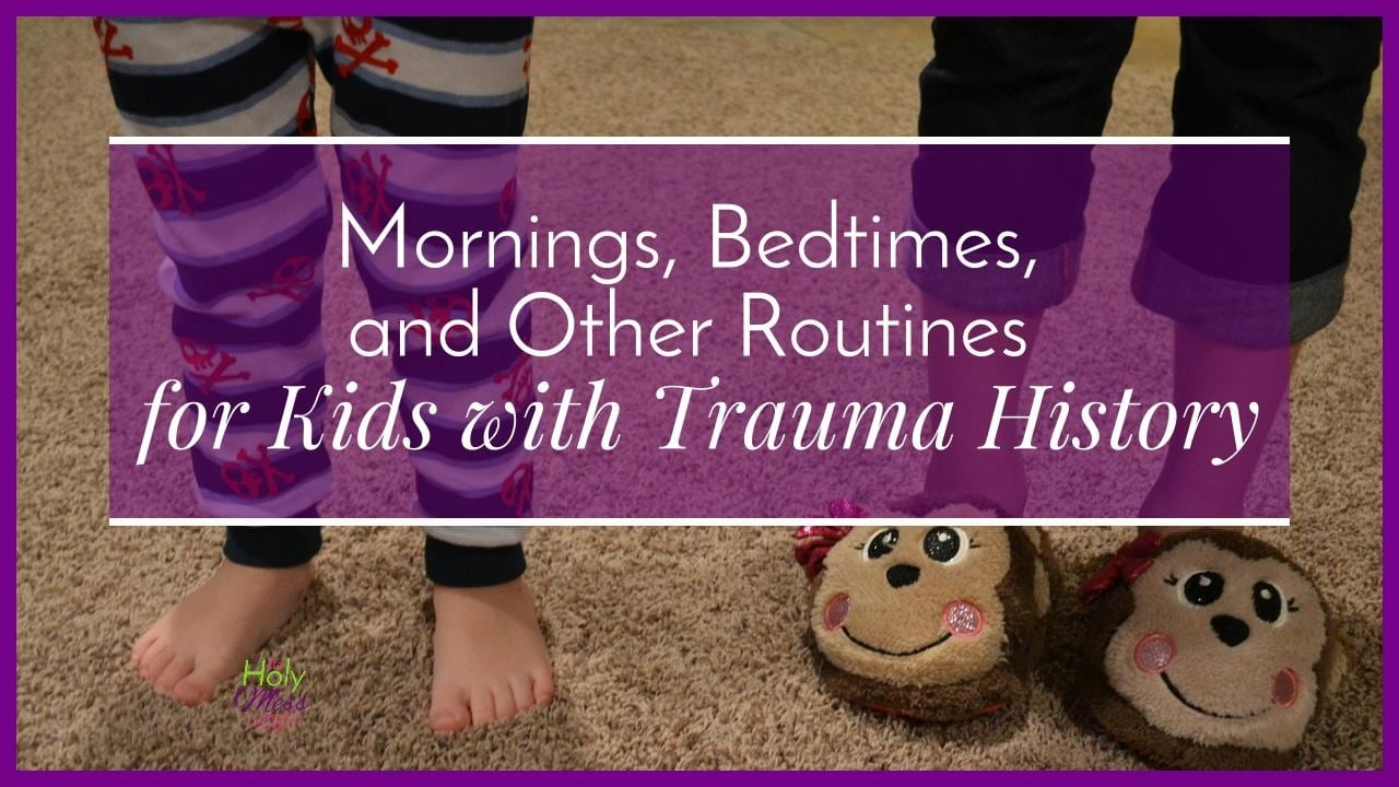 Mornings, Bedtimes, and Other Routines for Kids with Trauma History|The Holy Mess