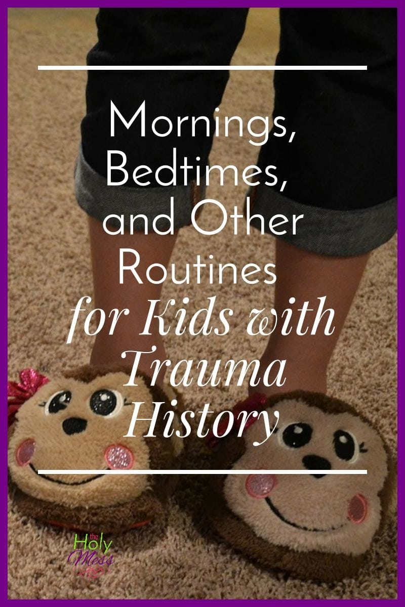 Mornings, Bedtimes, and Other Routines for Kids with Trauma History/The Holy Mess