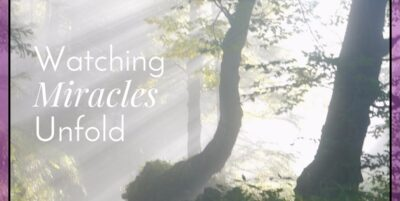 Watching Miracles Unfold|The Holy Mess