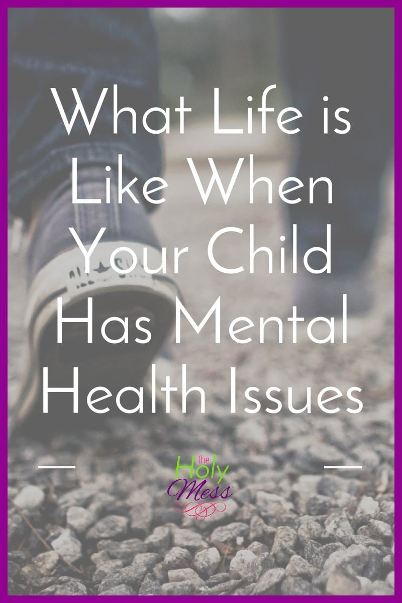 What Life is Like When Your Child Has Mental Health Issues|The Holy Mess