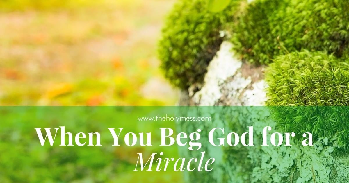 When You Beg God for a Miracle|The Holy Mess
