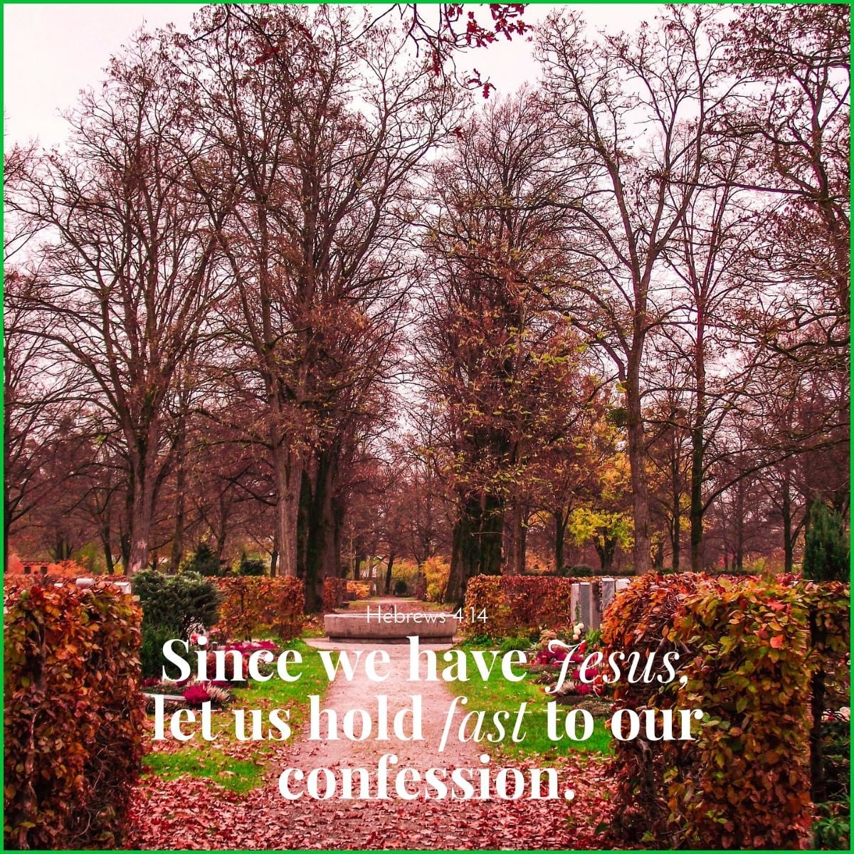 Since we have Jesus, let us hold fast to our confession. Hebrews 4:14