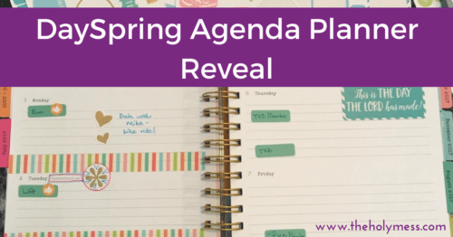 DaySpring Agenda Planner 2017 and 2018 Reveal