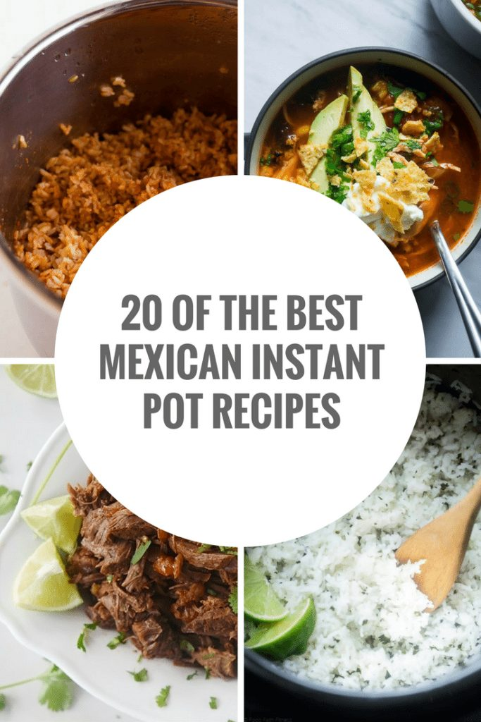 20 of the Best Instant Pot Mexican Recipes|The Holy Mess