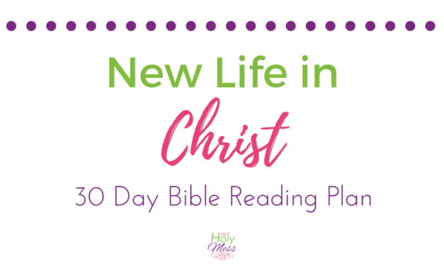 New Life in Christ Bible Reading Plan