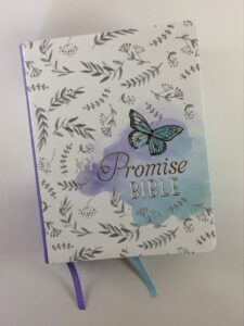My Promise Bible front cover