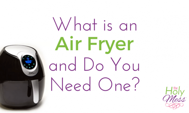 What is an Air Fryer and Do You Need One?