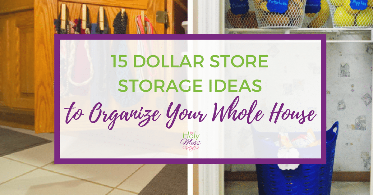 15 Dollar Store Storage Ideas to Organize Your Whole House