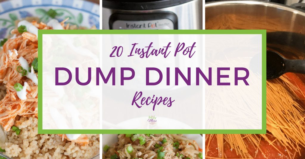 20 Instant Pot Dump Dinner Recipes