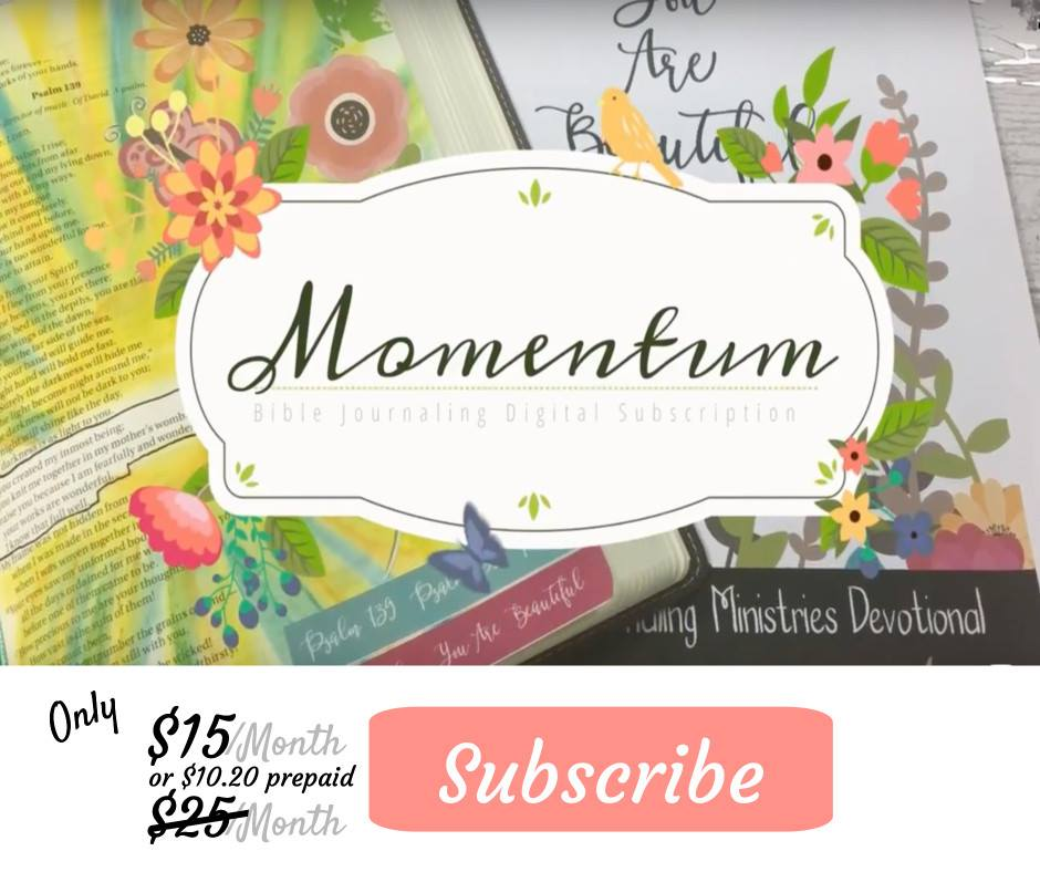 Momentum Bible Journaling Kit