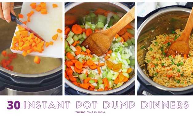 30 Days of Instant Pot Dump Dinners