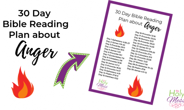 30 Day Bible Reading Plan about Anger
