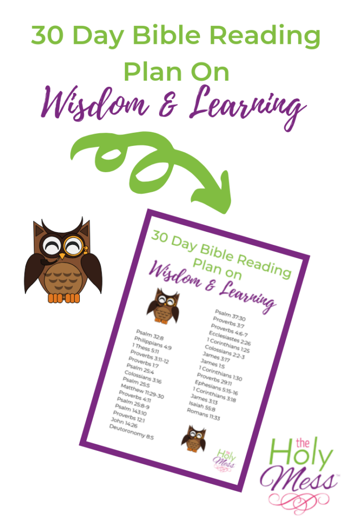 30 Bible Reading Plan on Wisdom and Education