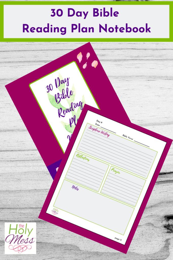 Bible Reading Plan Notebook