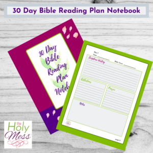 30 Day Bible Reading Plan Notebook Printable