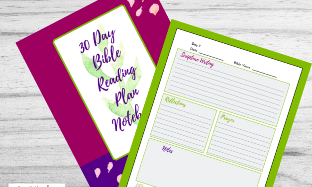 30 Day Bible Reading Plan Notebook