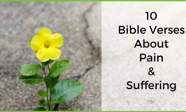 10 Bible Verses about Pain and Suffering