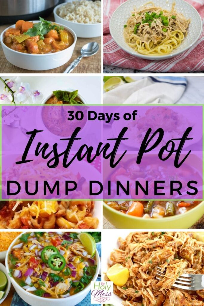 30 Instant Pot Dump Meals Recipes