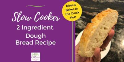 Slow Cooker 2 Ingredient Dough Bread Recipe