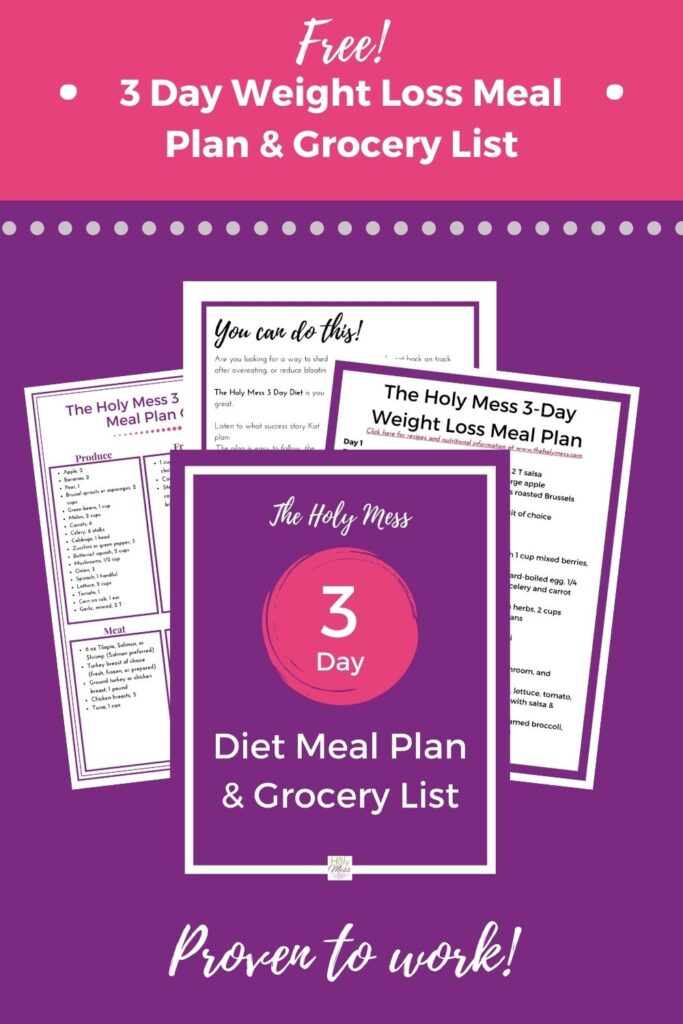 3 day diet meal plan