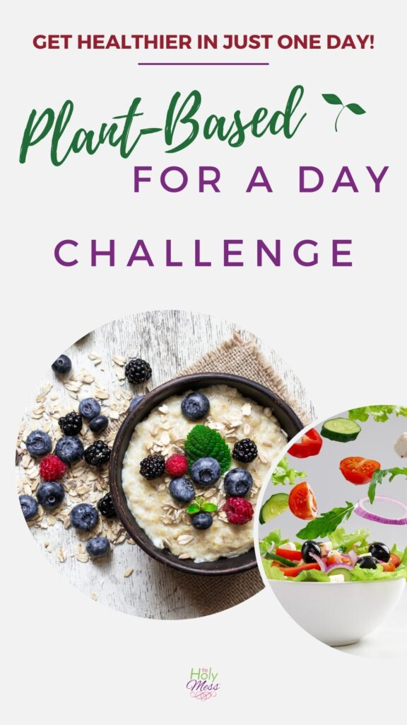 Plant Based One Day Meal Plan