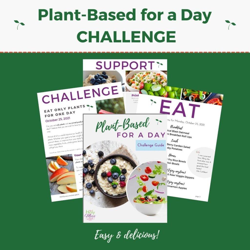 Plant Based Challenge Bundle