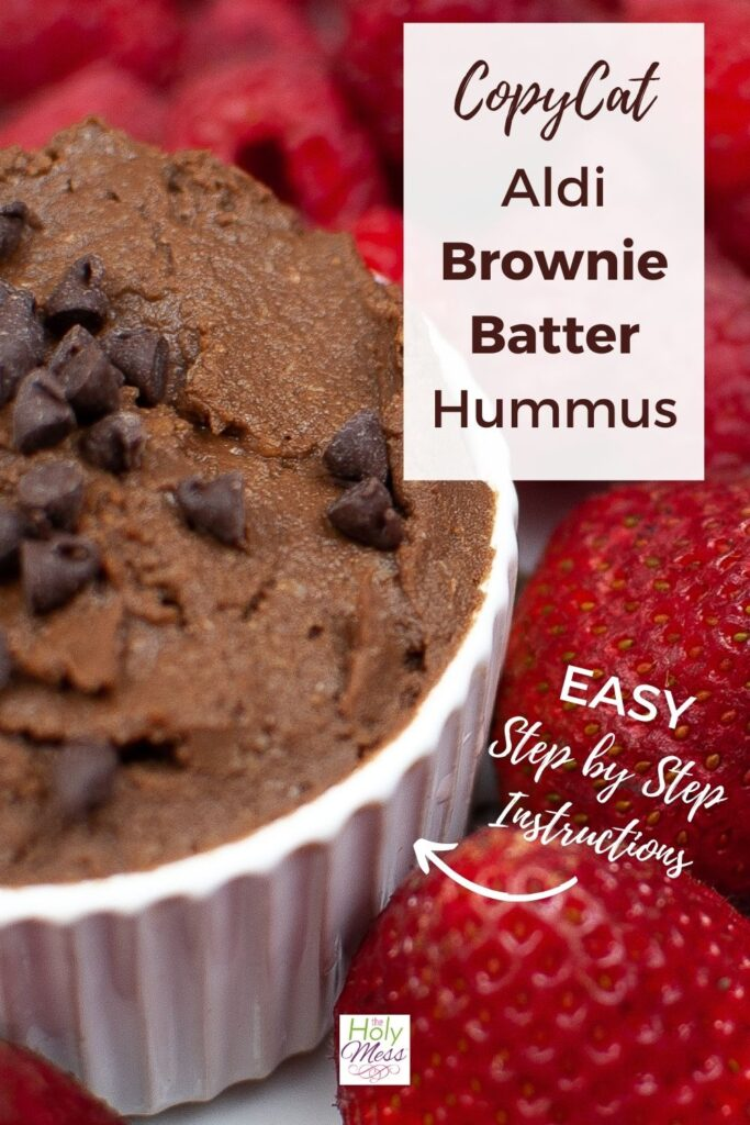 Aldi Copycat Brownie Batter Hummus Recipe